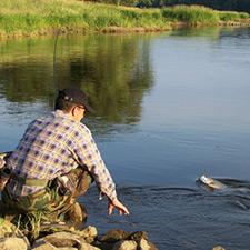 Wakacje z Gloogiem - rzeka